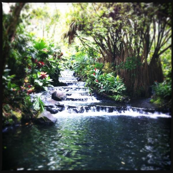 Aguas termales en Tabacón Costa Rica